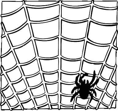 spider_on_a_web_BW