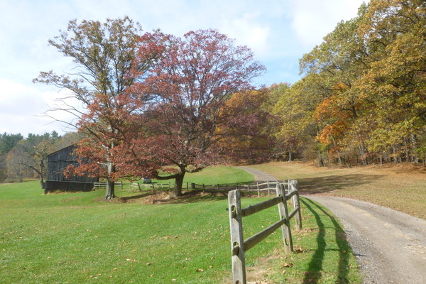 Hartwood Acres ( near stables)